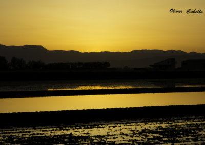Puesta de sol en El Delta
